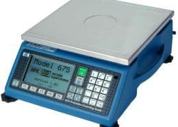 GSE 675 Counting Scale